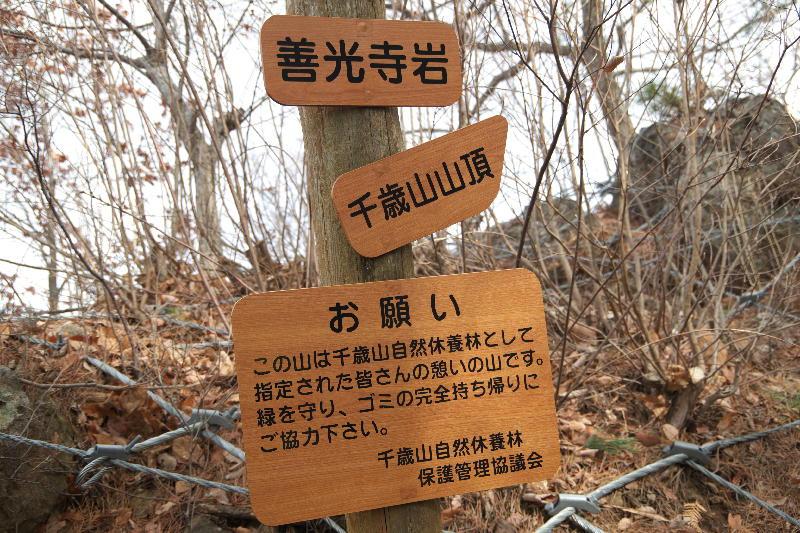 zenkoujiiwa.jpg